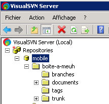 visualsvnserver0011
